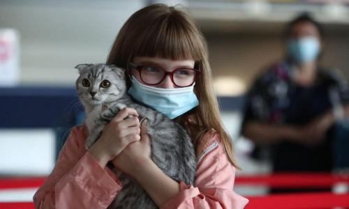 Кошки способны заражать людей коронавирусом