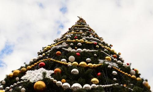 В одном из городов России новогоднюю елку украсили мусором