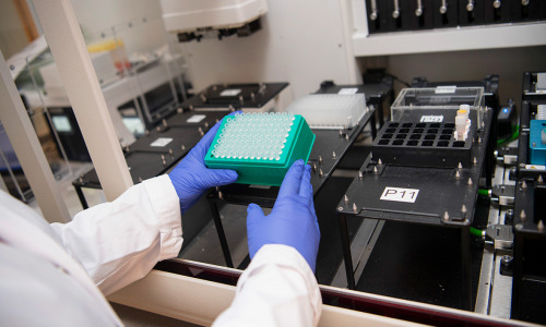 Что известно о новой более заразной мутации коронавируса N501Y?