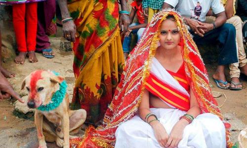 Почему в Индии женятся на собаках?